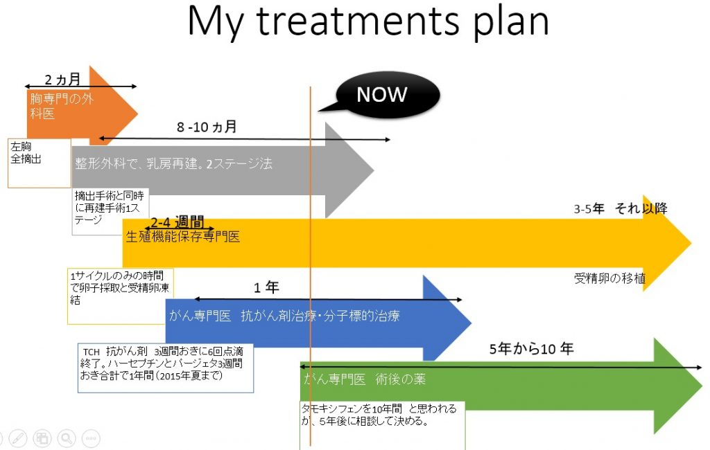 2015.01 Treatment Plan Breast Cancer